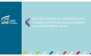 thumbnail of SNE_Normes-et-Standards_Accessibilite_juin2017 (1)