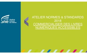 thumbnail of SNE_Normes-et-Standards_Accessibilite_2018