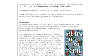 thumbnail of Le prix « J'aime le Livre d'Art » est attribué à Murs de papier de Christine Velut, préface de Vincent Darré (BNF éditions)